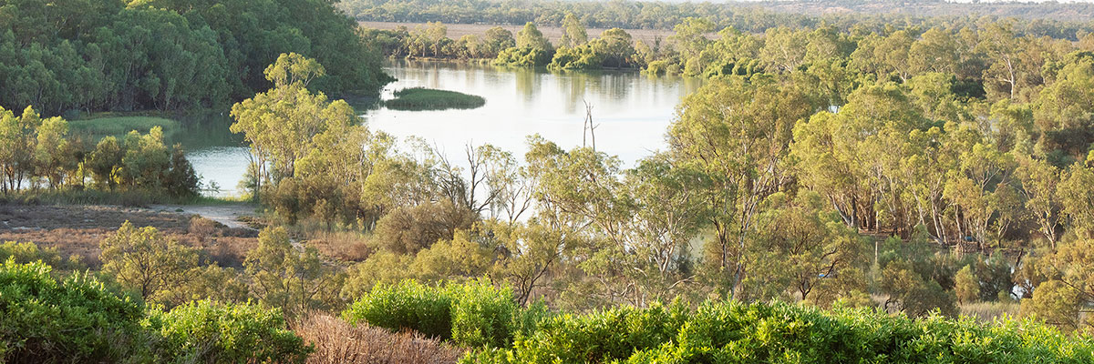 Panorama view of river landscape surrounded by mallee scrub