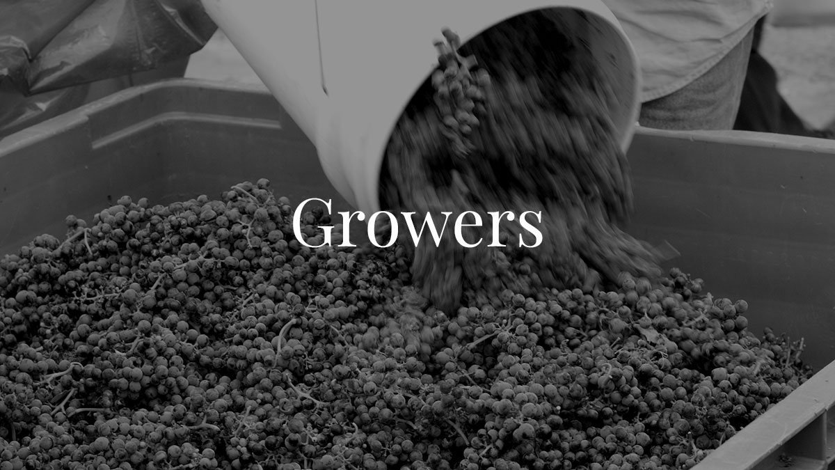 DW_home-growers-BW